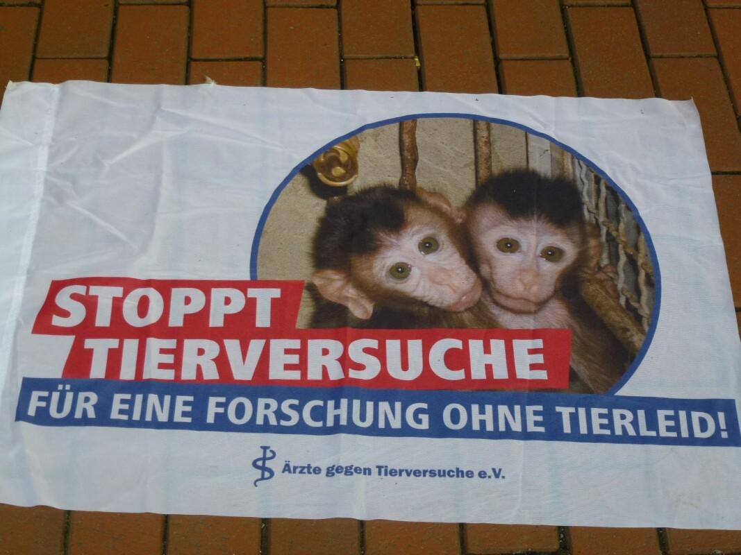 Gegen Tierversuche Giessen 2017 P1130588.jpg